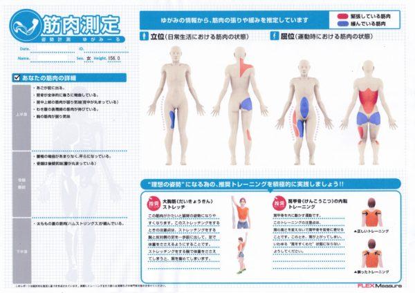 姿勢分析筋肉データ